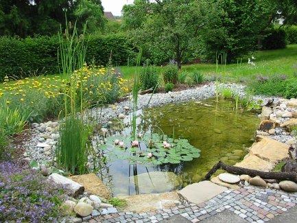 beispiele von greenteam gartengestaltung - Naturlicher Bachlauf Garten